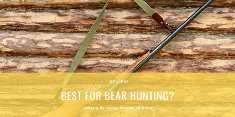BEST FOR BEAR HUNTING?