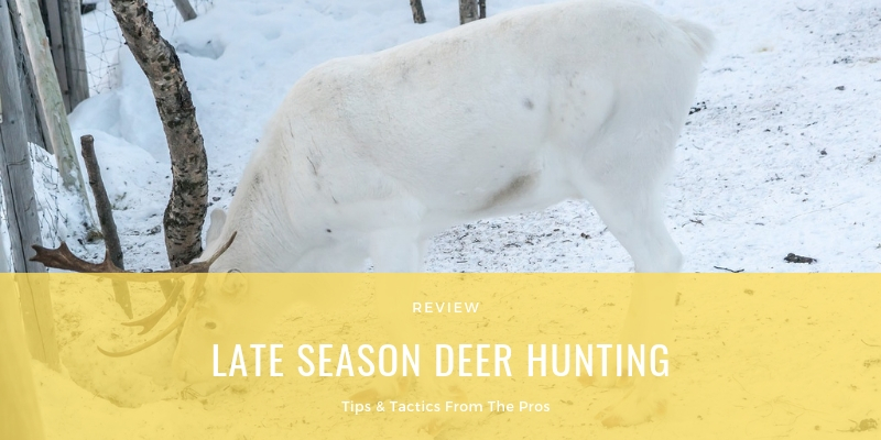 Late Season Deer Hunting