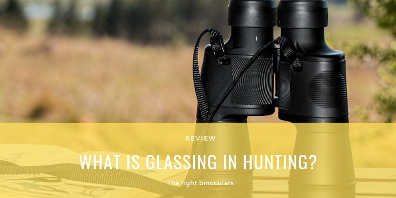 WHAT IS GLASSING IN HUNTING?