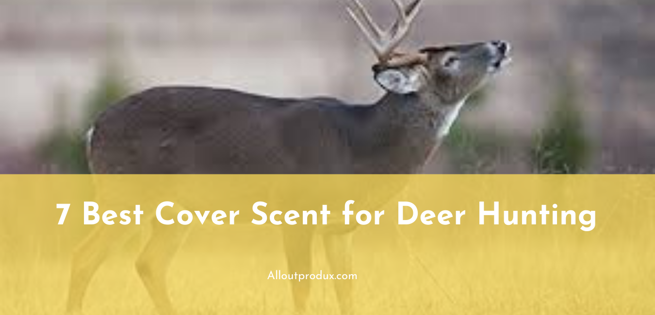 best cover scent for deer hunting